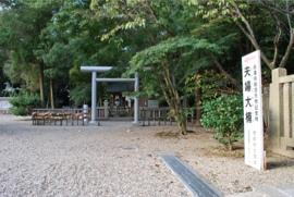 兵庫県指定天然記念物 夫婦大楠
